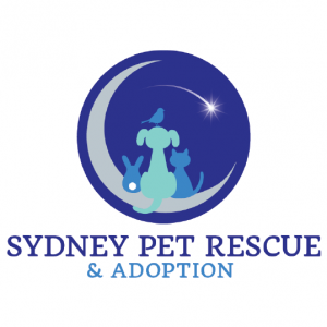 Sydney Pet Rescue & Adoption