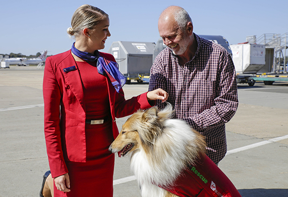 pet rescue flights