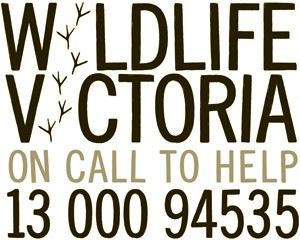 Wildlife Victoria Inc