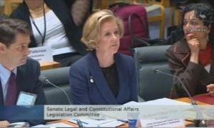 triggs at senate hearing