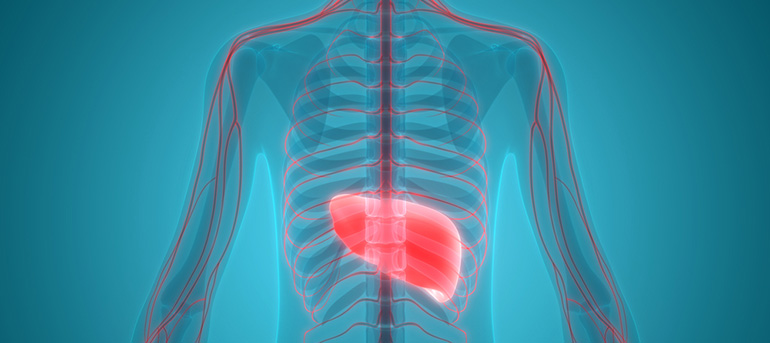 liver hepatitis