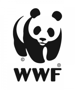 Head of Conservation (Singapore)