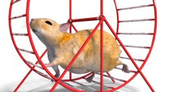 Finding Meaning on the Hamster Wheel? How is That Working for You?