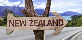 Australia Warned Not to Follow NZ Welfare Reform