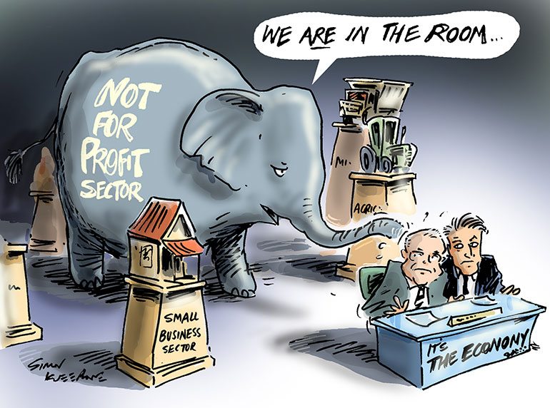 Cartoon showing the not for profit elephant in the room