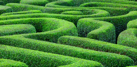 Helping Funders Look Above The Maze