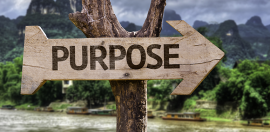 Why Purpose Aligned Businesses Outperform in the Long Term