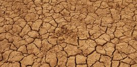 Emergency Drought Aid a Welcome Relief, But Long Term Focus Needed