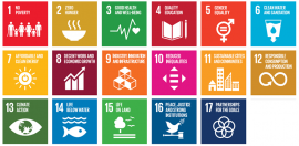 Six Tips For Advancing the Sustainable Development Goals
