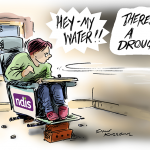 Kneebone NDIS cartoon
