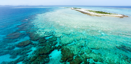 Sector Suspicious Over Great Barrier Reef Foundation's First Project