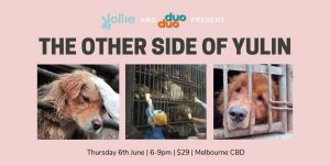 The Other Side of Yulin – An event to save a thousand dogs