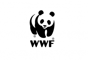 Earth Hour Volunteer – Campaign Assistant and Outreach Assistant