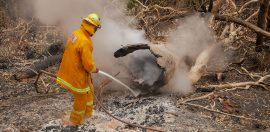 Value beyond money: Australia's special dependency on volunteers to battle bushfires