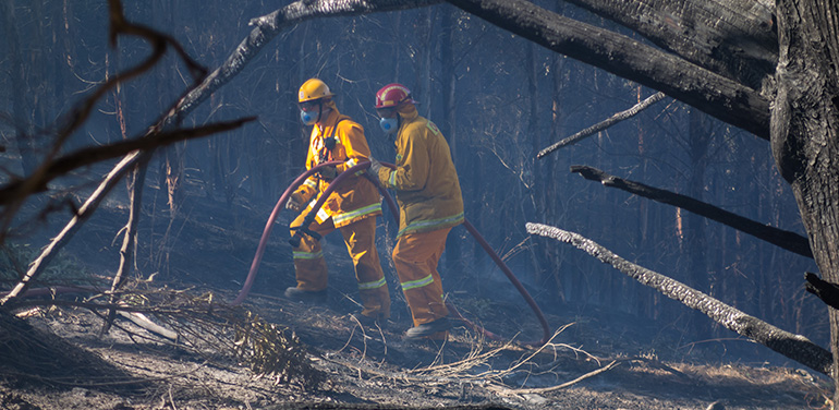 firefighters tackling bushfire