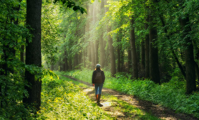 woman walking in a forest, with her back to the camera