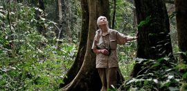 My talk with Jane Goodall