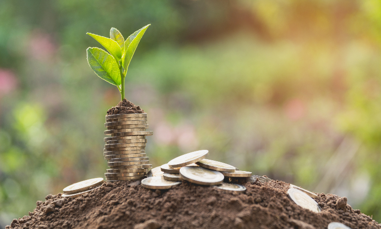 Young green plant with stack of coins on ground for growing business.