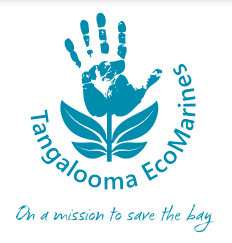 Tangalooma EcoMarines Corporate Clean-Ups